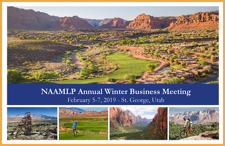 2019 NAAMLP Winter Business Meeting Flyer
